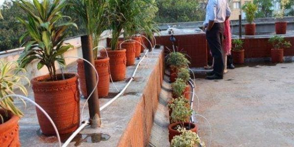 Drip irrigation bd (2)