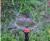 Vortex sprayer with smart stand